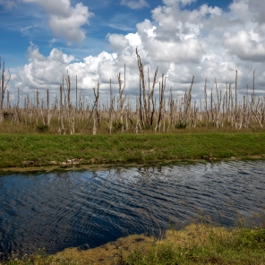 Everglades National Park in Florida is the largest wilderness of any kind east of the Mississippi River, visited on average by one million people each year.