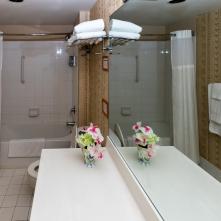 Studio Bathroom - Two Bedroom Unit, 22nd Floor